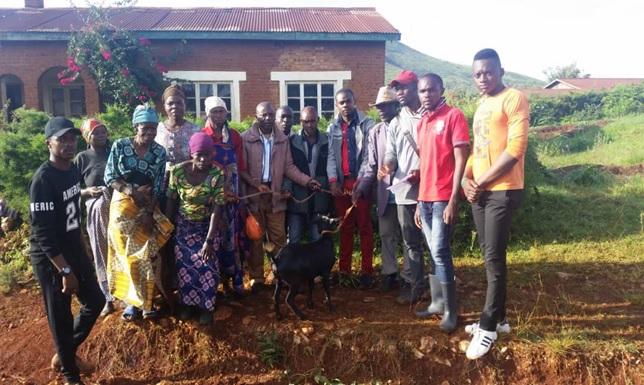 La féminisation de l'agriculture à Bideka dans la chefferie de Walungu au Sud-Kivu