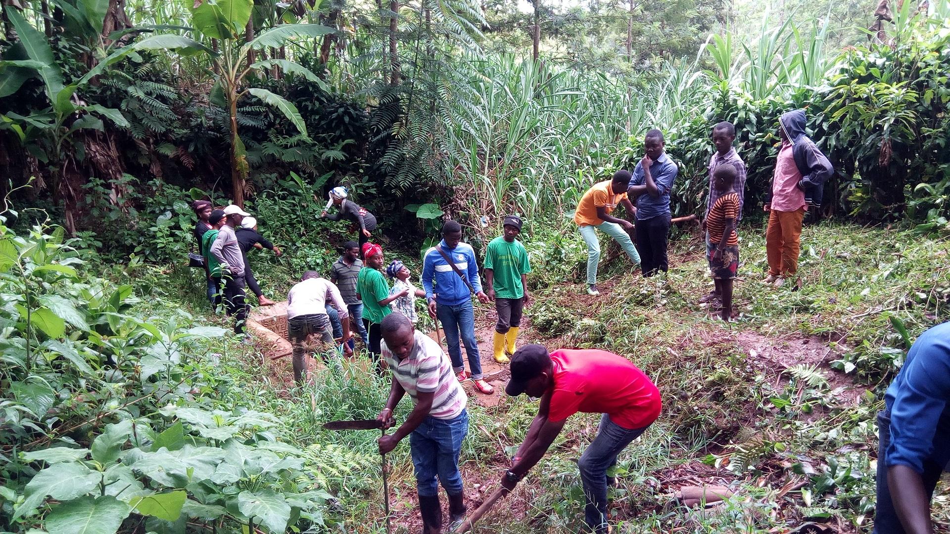 Garantir la santé humaine à Bushumba, une action des étudiants en sorties professionnelles